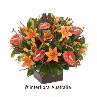 Florist Kingswood