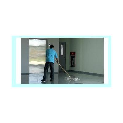 Carpet Steam Cleaners Campbellfield
