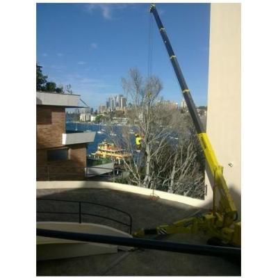 Tree Services North Shore - Tree Services North Shore