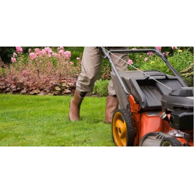 Garden Maintenance Randwick