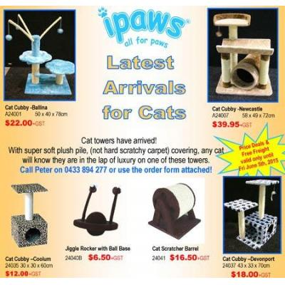 Cat Supplies - Bedding, Toys, Accessories Brisbane - Cat Supplies, Bedding, Toys, Scratcher, Tower,