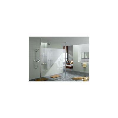 Frameless Shower Screens Arana