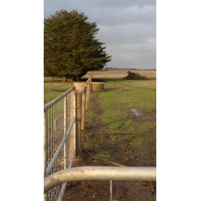 Fence Installation Terang