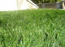 Artificial Grass by Southern Hydroseeding Melbourne logo