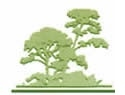 Arboreal Tree Care - Tree Lopping Service Rockingham logo