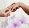 Absolute Partnership - Wedding Celebrant Hurstville logo