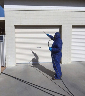 Pest Control Leeton, Termite Control Riverina, Pre-Purchase Pest Inspection Coleambally