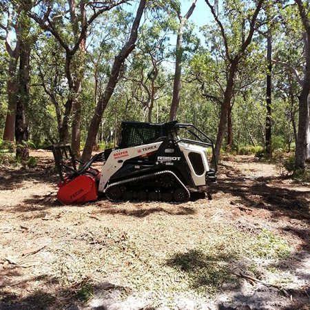 Woodchipping Tuggerah, Tree Removal Woy Woy, Stump Grinding Central Coast, Land Clearing Gosford, Tree Surgery Newcastle, Fence Line Clearing Central Coast