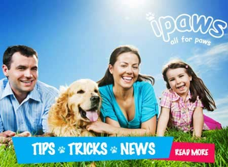 Pet Products Northern Suburbs Sydney, Macquarie Park, Ryde, Eastwood, Epping