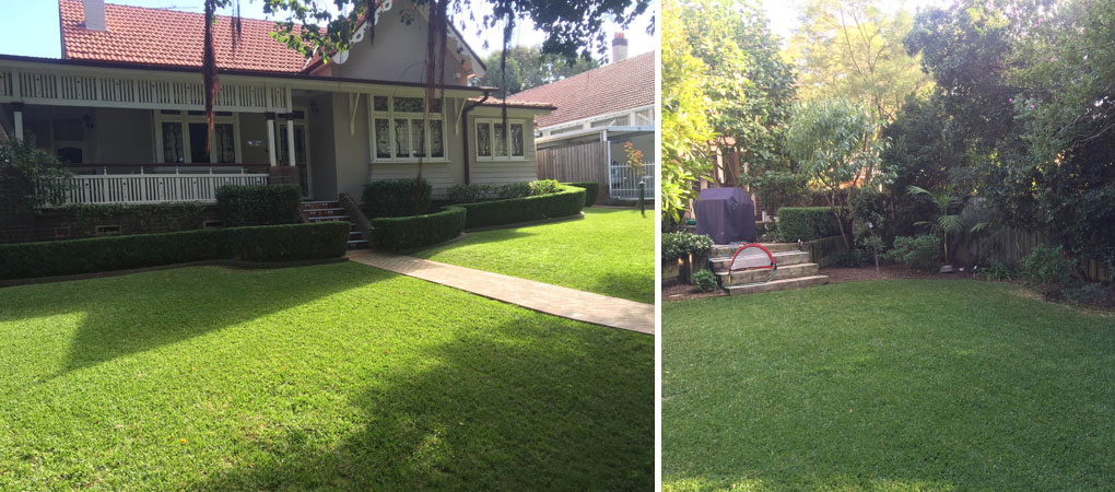 Turf Laying Drummoyne, Strata Maintenance Concord, Strata Cleaning Balmain, Garden Clean Ups Five Dock, Hedging North West Sydney, Turf Laying Five Dock